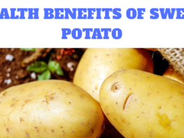 HEALTH BENEFITS OF SWEET POTATO